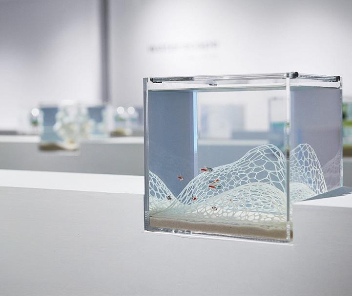 Vegyél a halaidnak szuperdizájnos 3D nyomtatott akváriumot!