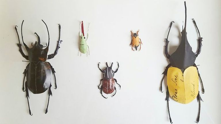 Ezektől a rovaroktól senki sem fél
