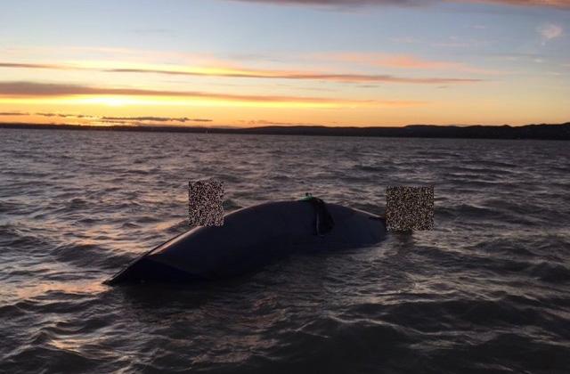 Felborult vitorlás utasait mentették a Balatonból - fotó