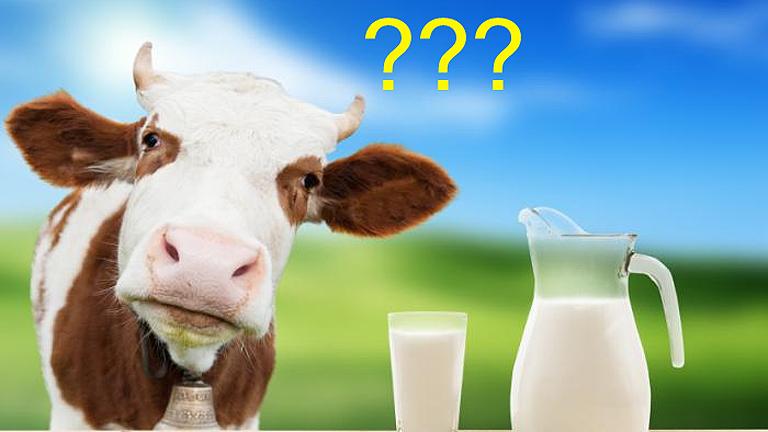 A (csótány)tej élet, erő, egészség! (Fotó: Tumblr)