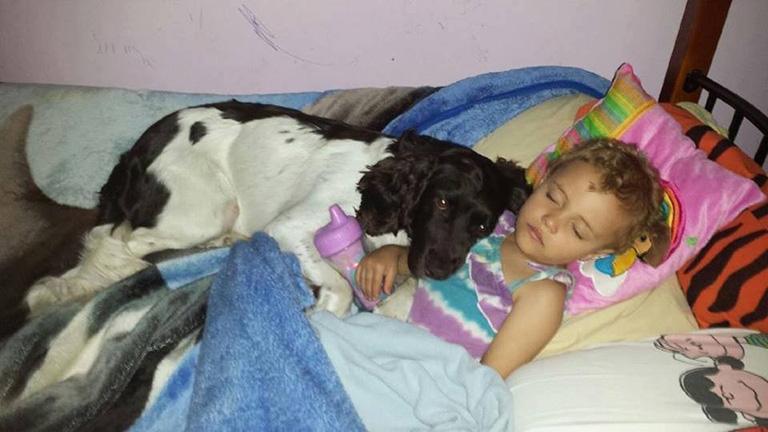 Minden nap megmenti a kislány életét ez a kutya