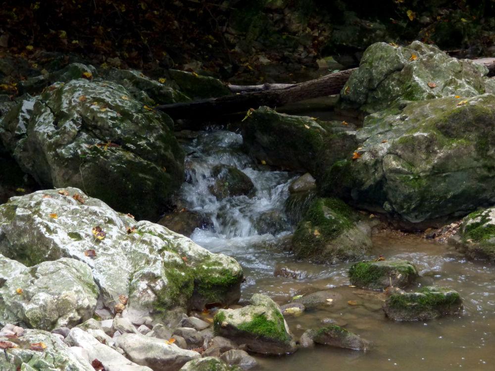 Bemutatjuk az ország egyik legszebb túraútvonalát – A Cuha-patak völgye a Bakonyban