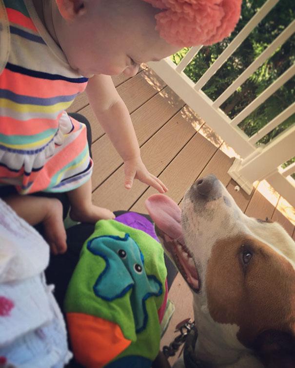 Tüneményes: már azelőtt egymásba bolondult a kislány és a kutya, hogy egyáltalán találkoztak volna