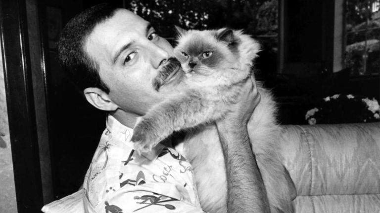 Ez történik ma, Freddie Mercury szülinapján