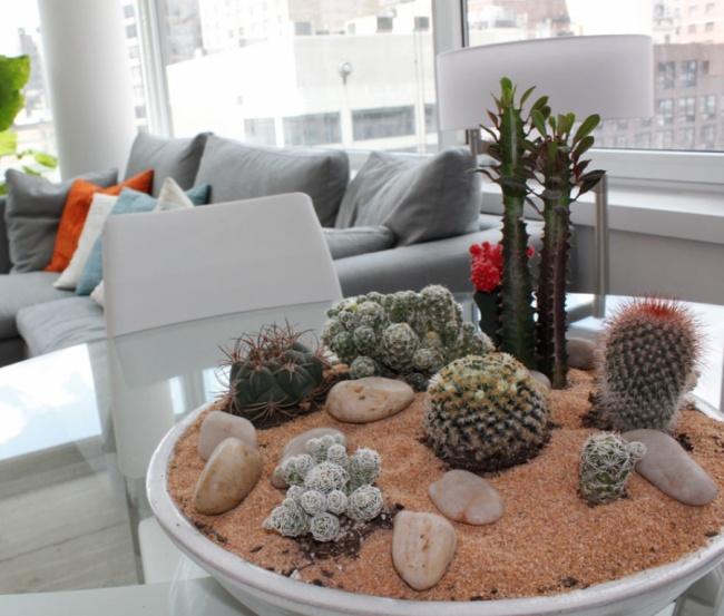 10 hihetetlenül szívós szobanövény a szuperelfoglalt emberek otthonaiba