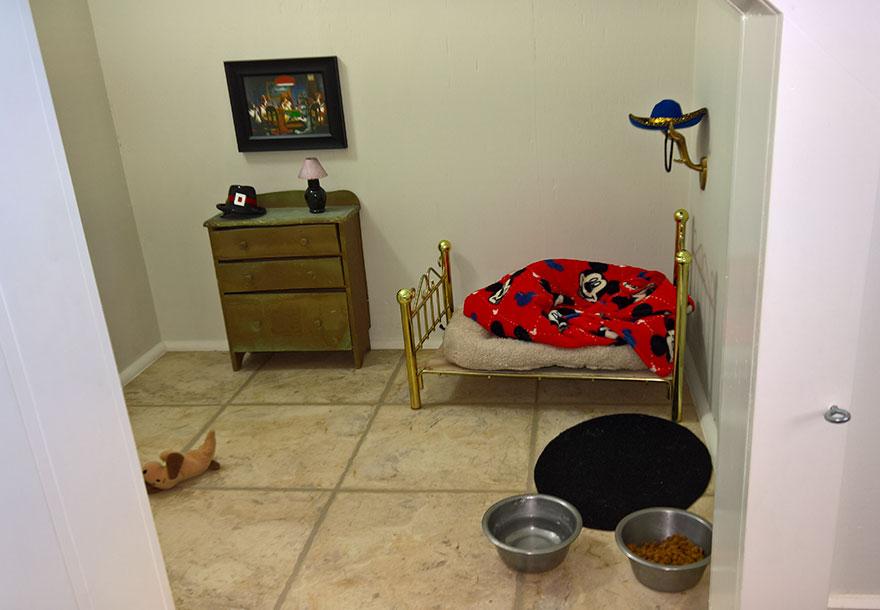 Saját szobát épített csivavájának - fotók