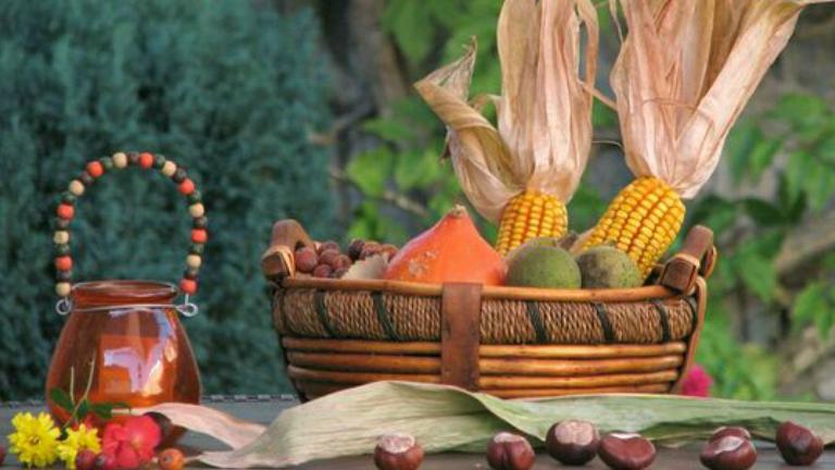 Kerti teendők ősszel: ezeket ne feledd!