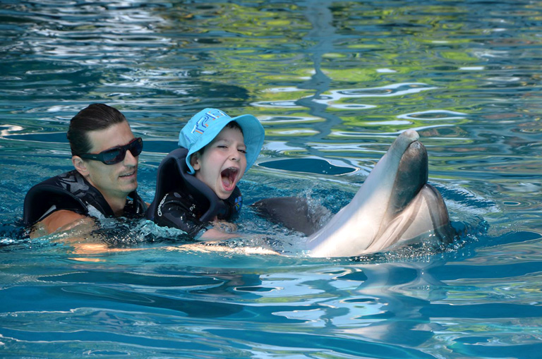 Delfinek segítettek a sérült magyar kisfiúnak