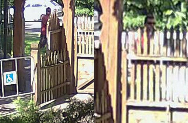 Az állatkertnél emelt szoknyát a szatír