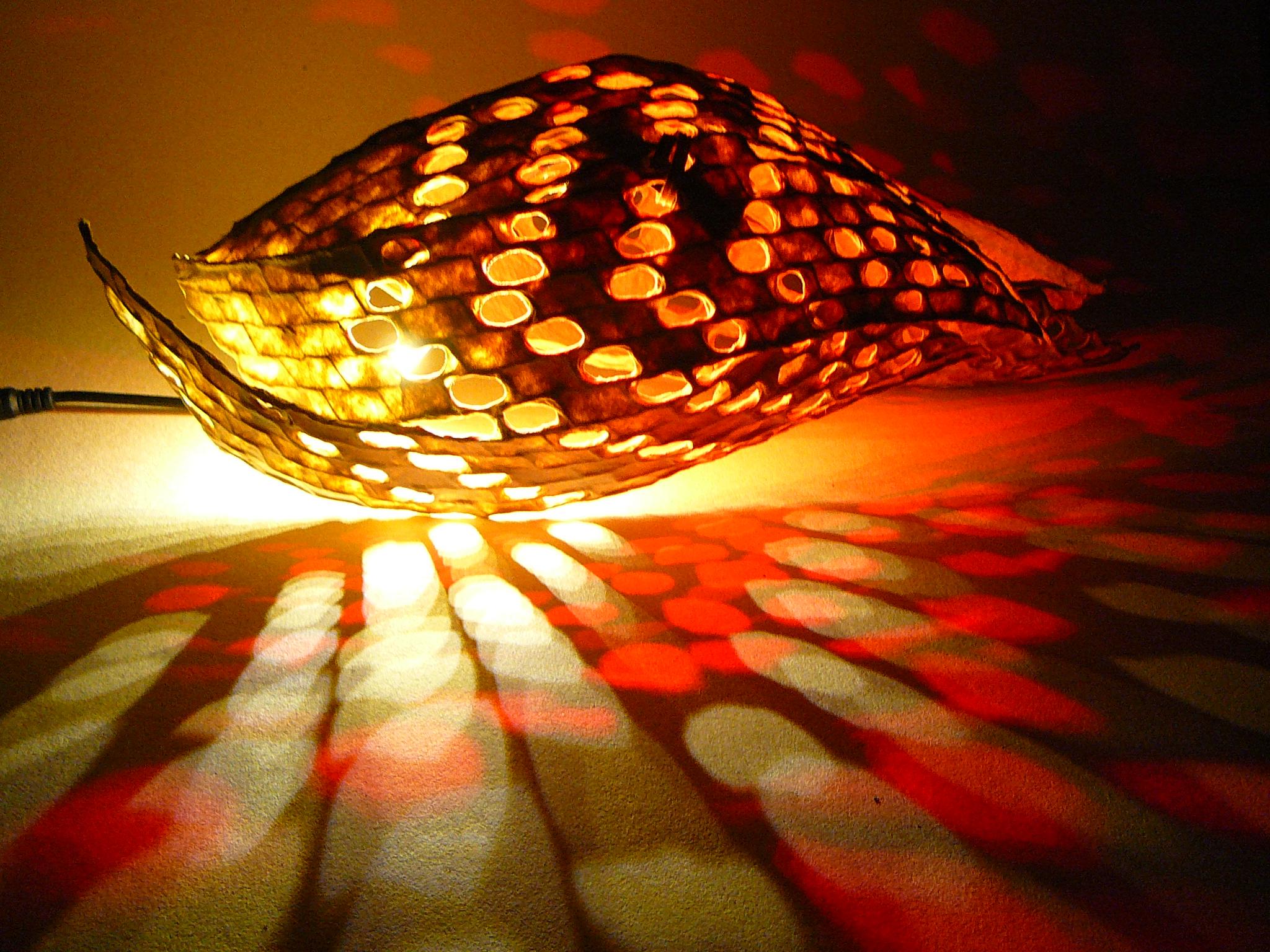 Csigalámpákba kevert csodafények – Ismerd Búza Krisztina különleges lámpáit