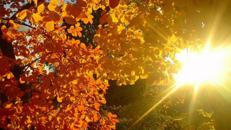 Napsütéses idő várható szeptember utolsó napjaiban