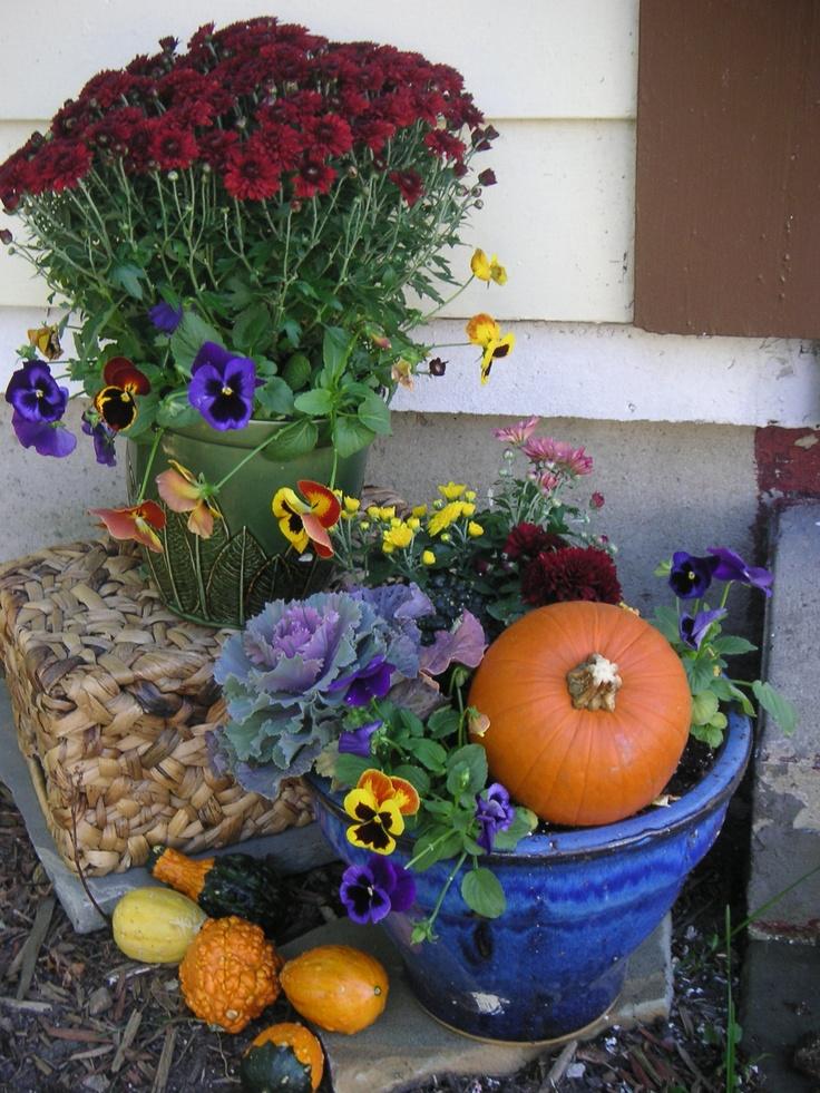 Balkonládák őszi lakói