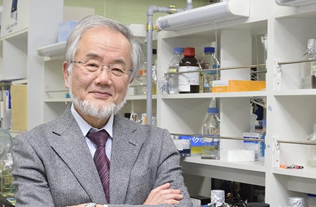 Japán tudós kapta az orvosi Nobel-díjat