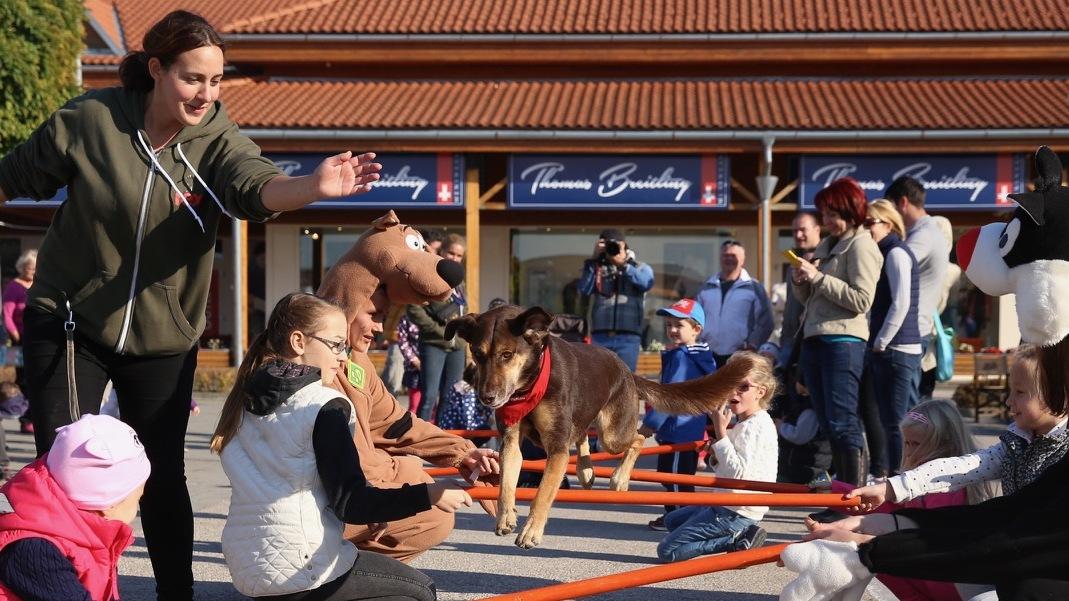 Felelős állattartásról és vásárlási maratonról szólt a hétvége a Premier Outletben
