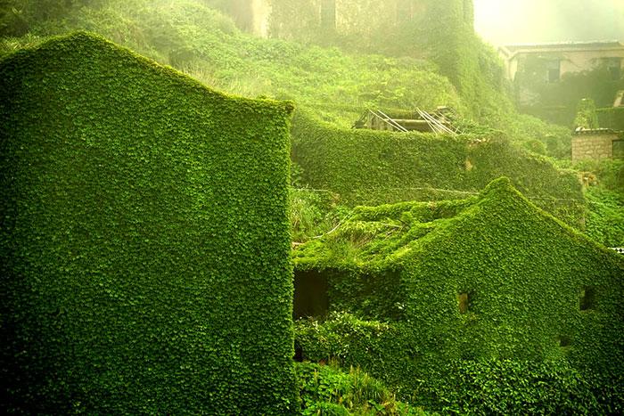 A természet vette át az uralmat az elhagyatott faluban