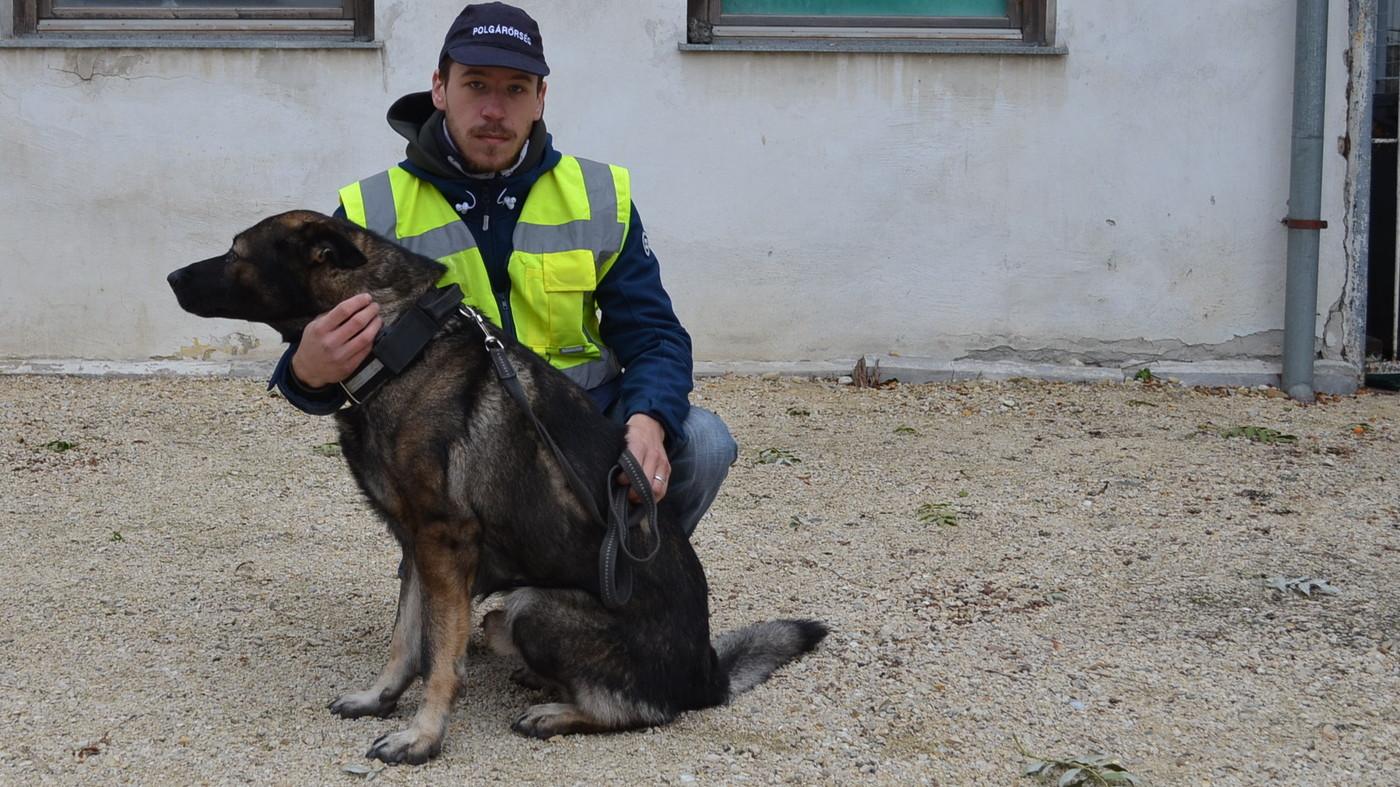 Nem jutott messze a tolvaj az óvári polgárőrök kutyájával