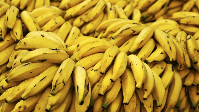 Cavendish banán, ahogy ismerjük és szeretjük (Fotó: Tumblr)