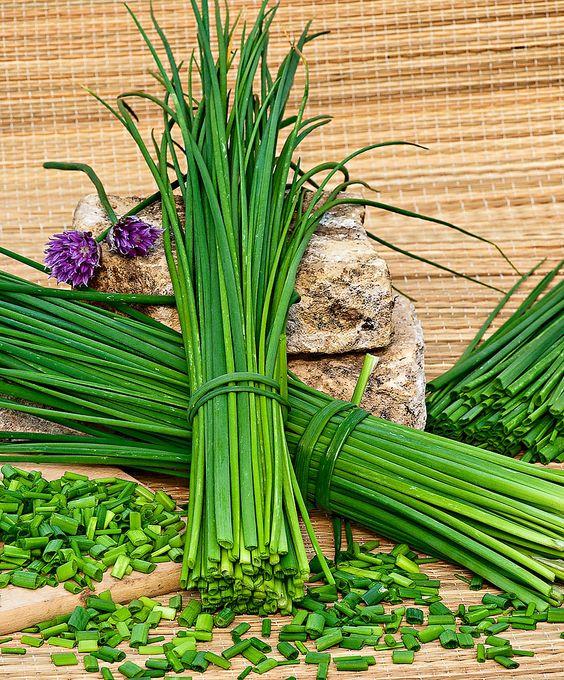 Így teleltesd át a fűszernövényeid!
