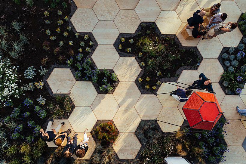 Ez a méhsejt alakú városi veteményeskert a leginspirálóbb dolog, amit ma láthatsz