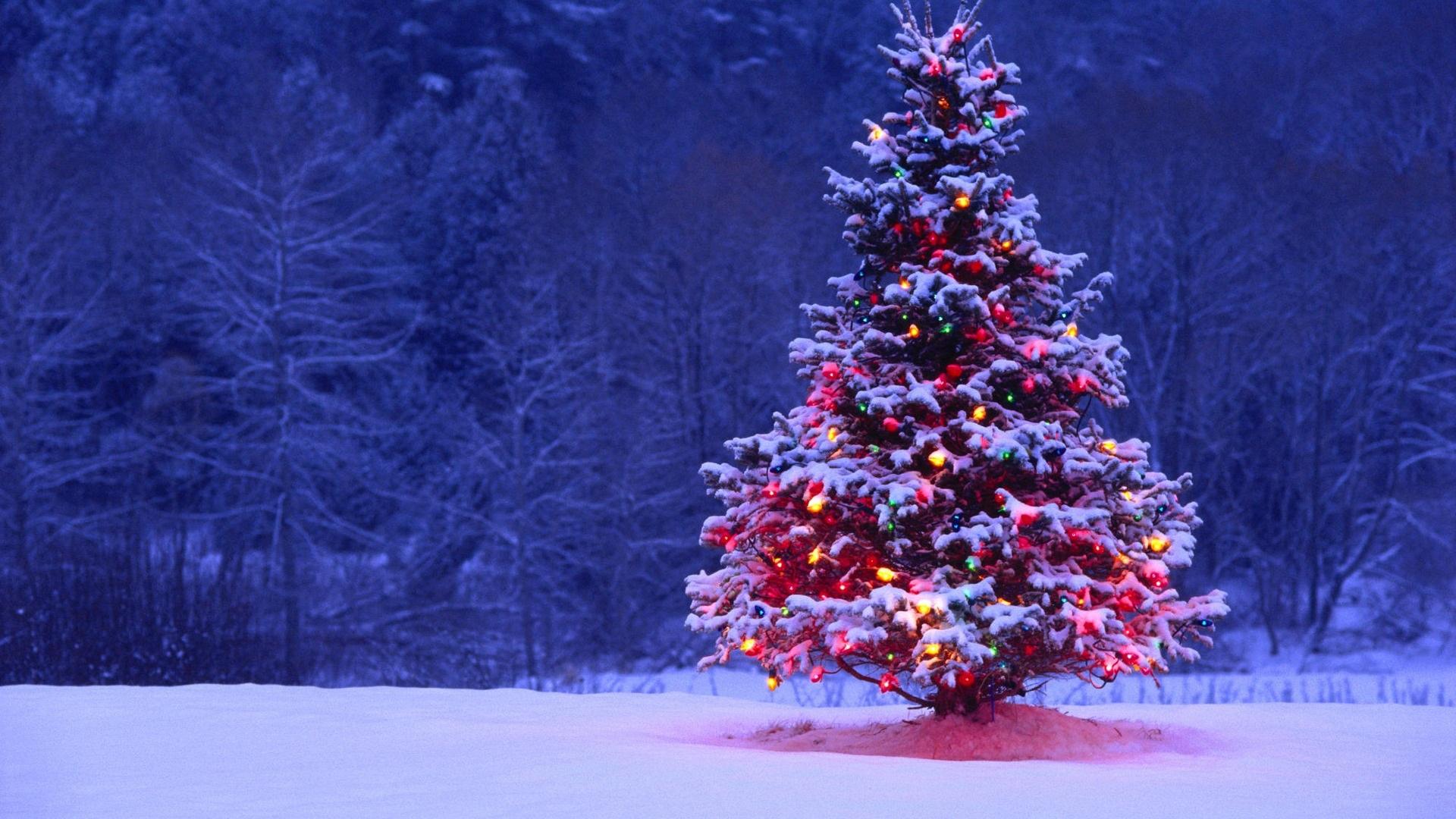 10 dolog, amit tutira nem tudsz a karácsonyról