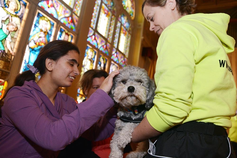 Segítőkutyák látogatták meg a látássérült gyerekeket