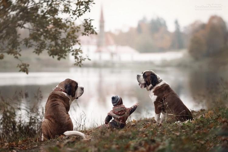 Kicsi gyerekek hatalmas kutyákkal - cuki fotók