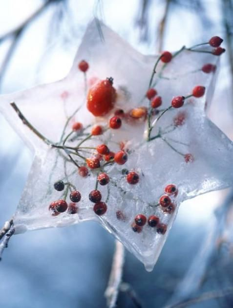 Csodaszép jégvarázs a kertben