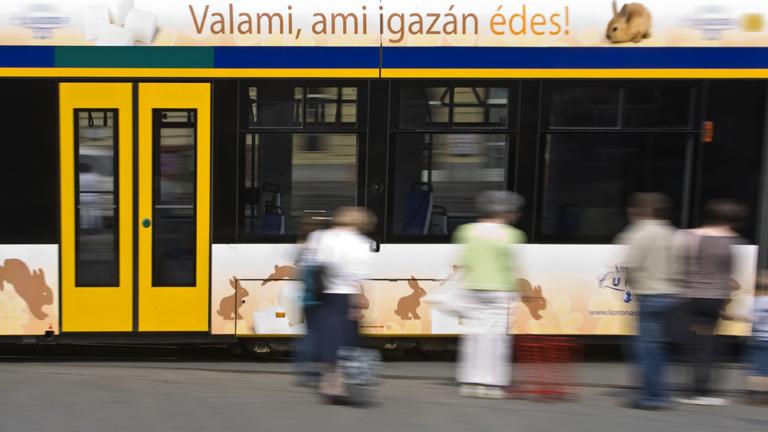 Fotó: Szigetváry Zsolt
