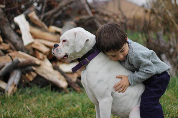 10 ok, amiért minden kisgyereknek kutyával kell felnőnie