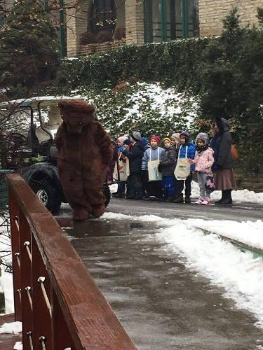 ÉLŐ: Az állatkertből jelentjük, hogy lesz-e árnyéka a medvének