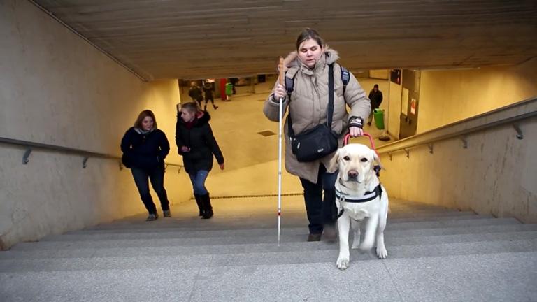 Így látja a budapesti tömegközlekedést a vakvezető kutya, Gerbeaud és a gazdája, Noémi