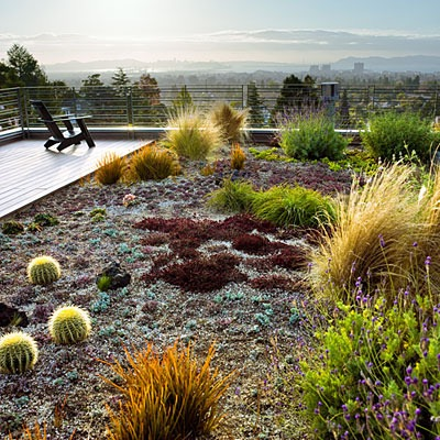 Nézegess fotókat elképesztő városi tetőkertekről!