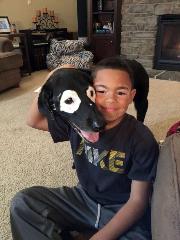 A kutyából merített önbizalmat a vitiligós kisfiú