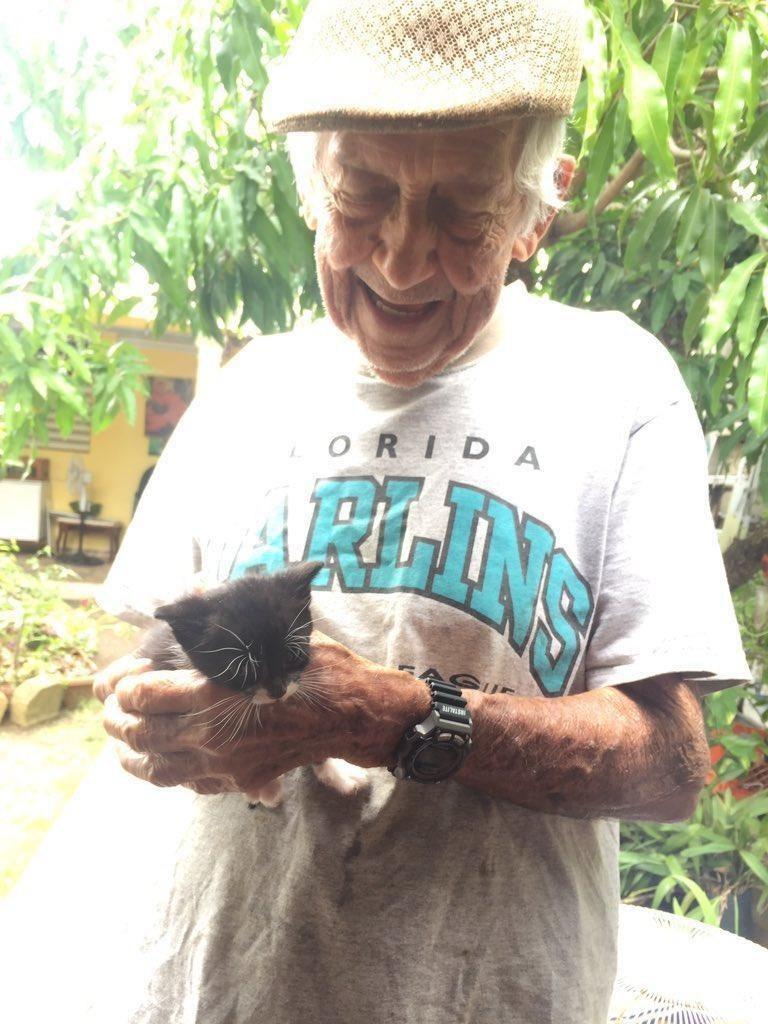 Titokban gondozza a kóbor macskákat a nagypapa