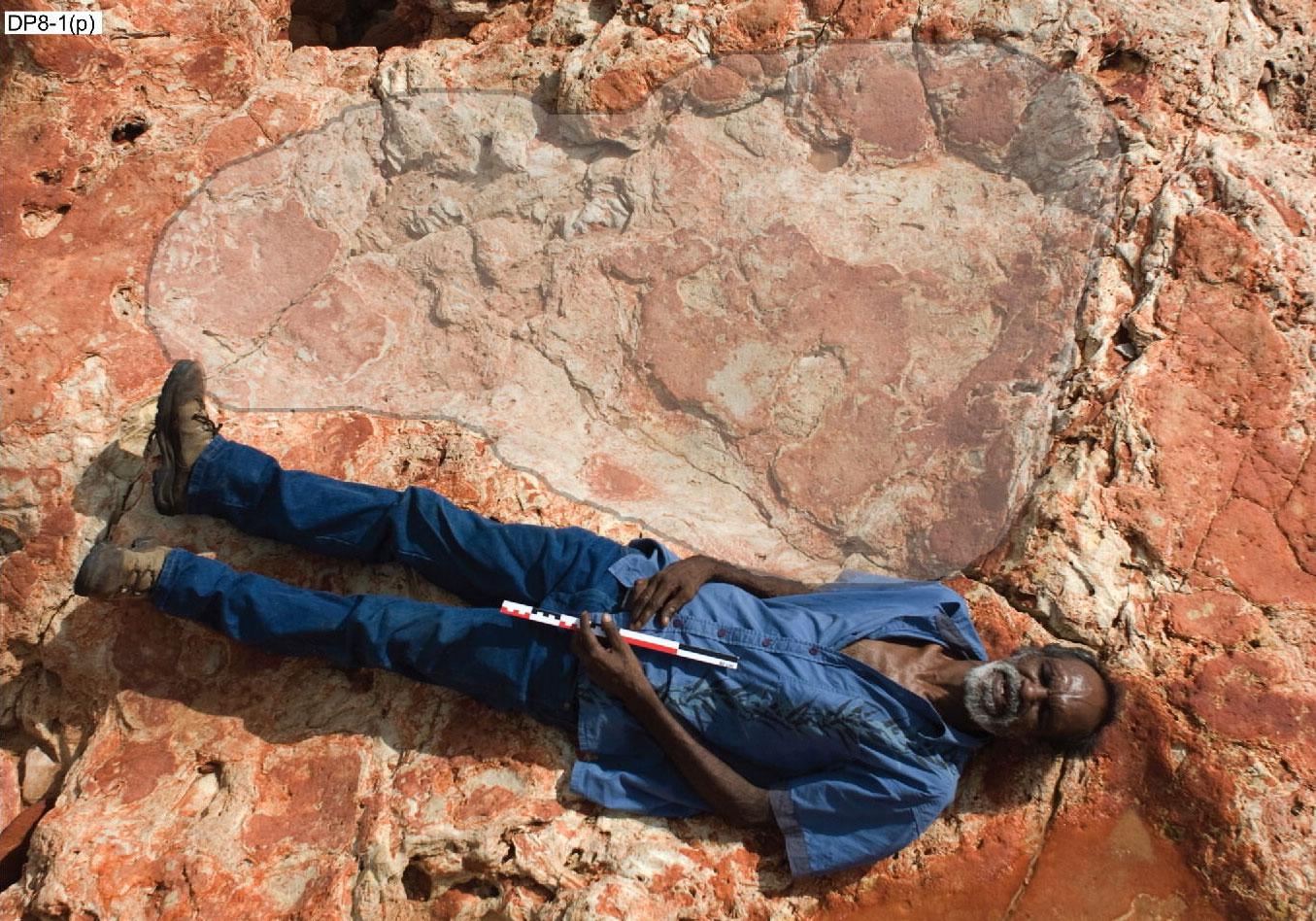 Richard Hunter, a Goolarabooloo törzs tagja szemlélteti a lábnyom méretét - a kezében tartott mérőpálca hossza 40 centiméter (Fotó: University of Queensland)