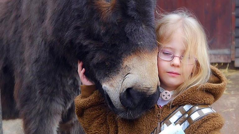 Egy terápiás szamárnak köszönhetően mondta ki első szavait a kislány