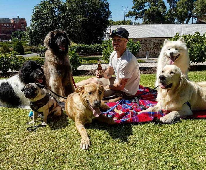 A világ legnagyobb kutyamániása nem nyugszik, amíg nem talál otthonra minden kutya