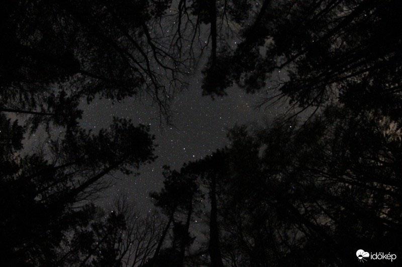 Ilyen csillagos égbolt fotókat még biztos nem láttál