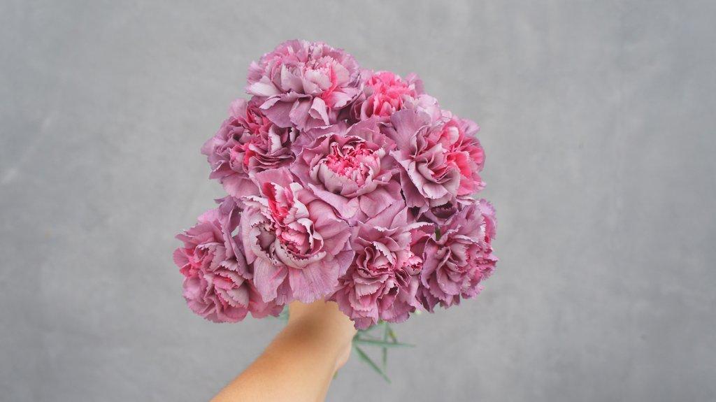 5 virág, ami legalább olyan szép, mint a bazsarózsa
