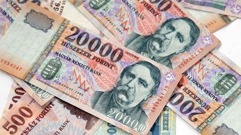 Több mint 7 milliót csaltak ki a győri nyugdíjastól