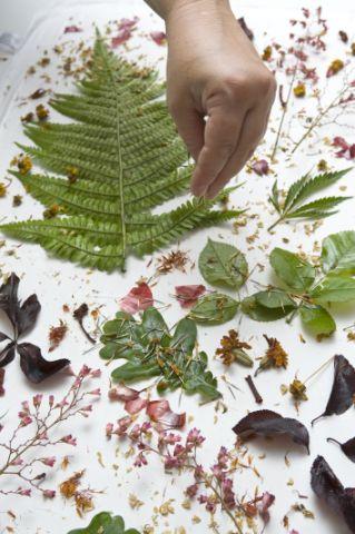 Ecoprint: te is tudsz leveleket nyomdázni a kendődre