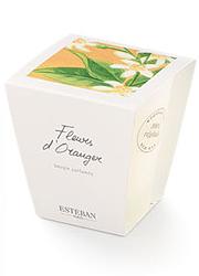 Ez az illatgyertya valójában üvegtégelyes mécses, 100 %-ban növényi viaszból.  Esteban Paris illatmécses - fleur d'oranger (narancsvirág) (5990 Ft, Szépségek Kicsiny Boltja)