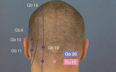 Az Epehólyag 20-as pont (GB 20) a fejbiccentő- és a trapézizom tapadása közötti mélyedésben, a sziklacsont mögött, a nyakszirtcsont alatt, a tarkón található egy mélyedésben.
