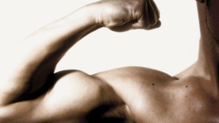 testépítő, bodybuilder