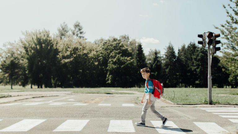 iskola, iskolaba megy, tanevkezdes, gyerek