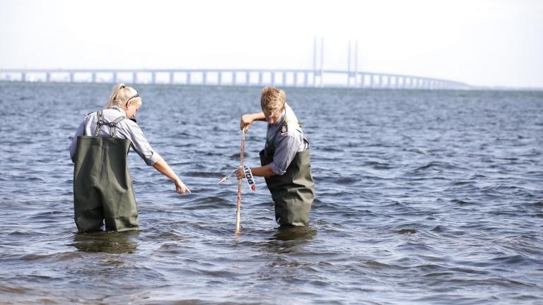 Kim Walll testrészeit keresik (fotó: Martin Sylvest, Scanpix Denmark / AFP)
