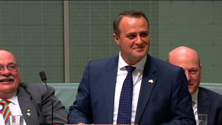 Tim Wilson a parlamentben (fotó: AFP / Australian Parliament via Seven News)