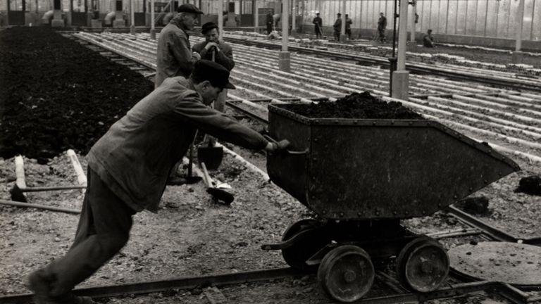Bányamunkás az 1970-es években (forrás: MTI fotóarchívum, HOM Történeti Adattár 79.727.1. lsz. / Miskolc adhatott blog)