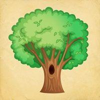 fa teszt tölgy