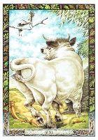 kelta tarot horoszkóp rák